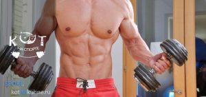 Как повысить уровень тестостерона, 16 лучших способов